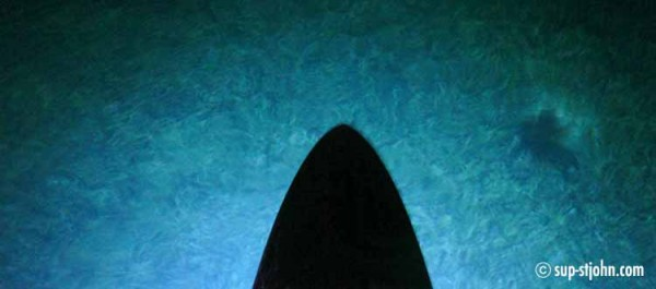 nightpaddle-stjohn-usvi